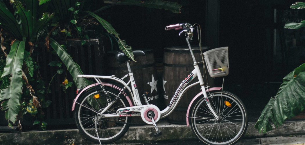 What are the options for bicycle rental in Singapore?